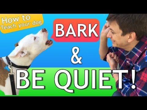 How to Teach your Dog to Bark and STOP BARKING!