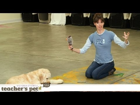 Teach a Dog to 'Take It' and 'Drop It' | Teacher's Pet With Victoria Stilwell