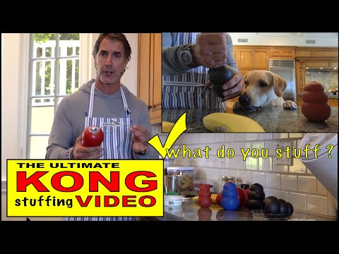 The Ultimate KONG Video - Dog Treats - Best Kong Fillers and Stuffing
