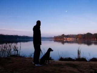 Man walking with his dog near a lake at dawn