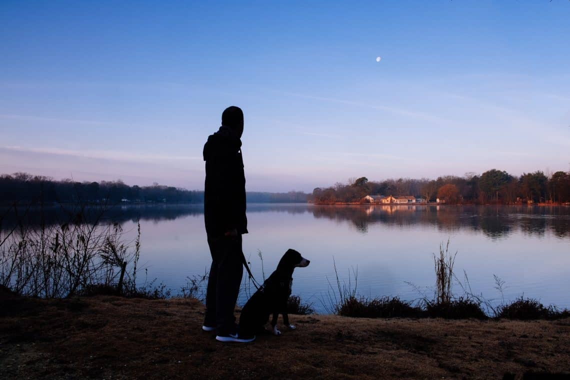 Man walking with his dog near a lake at dawn