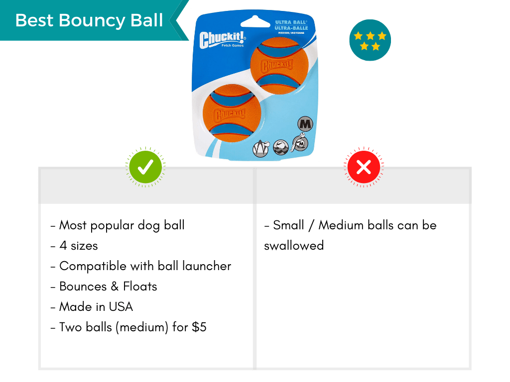 Product card featuring the Chuckit ball as best bouncy dog ball.