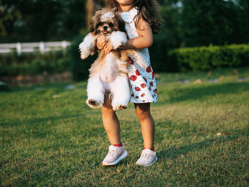 Young girl picks up small dog by his underarms.