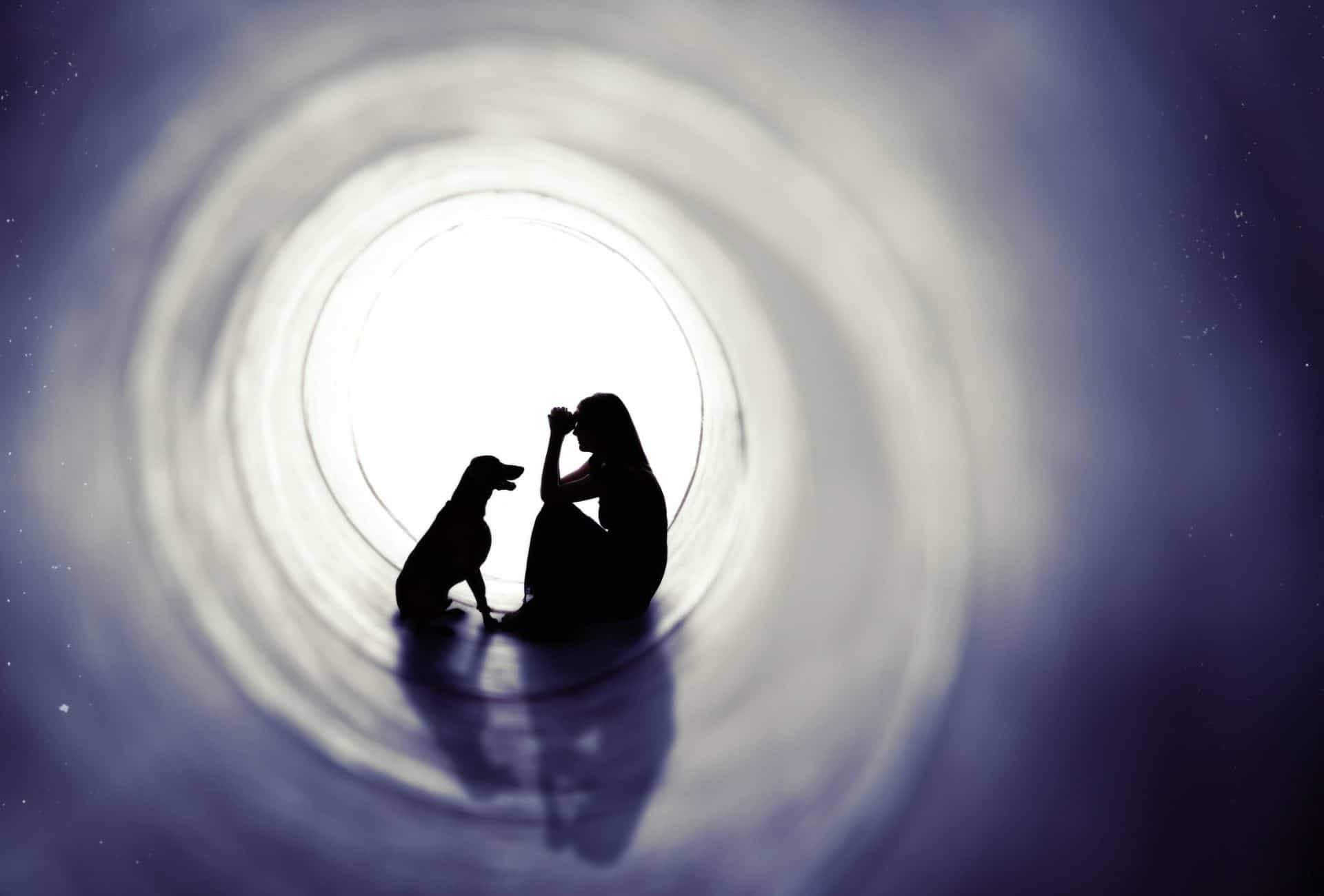 dog with owner in a dark tunnel