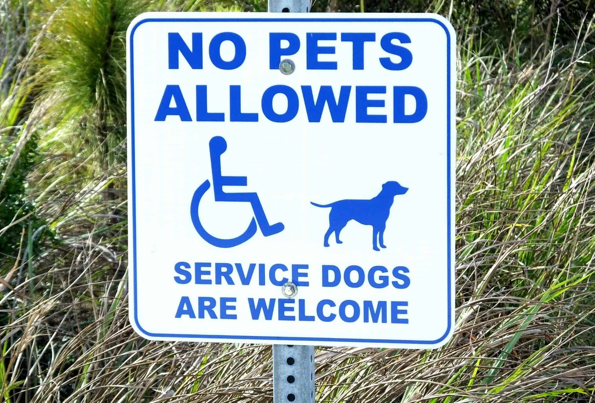 """A large sign that reads """"no pets allowed, service dogs are welcome""""."""