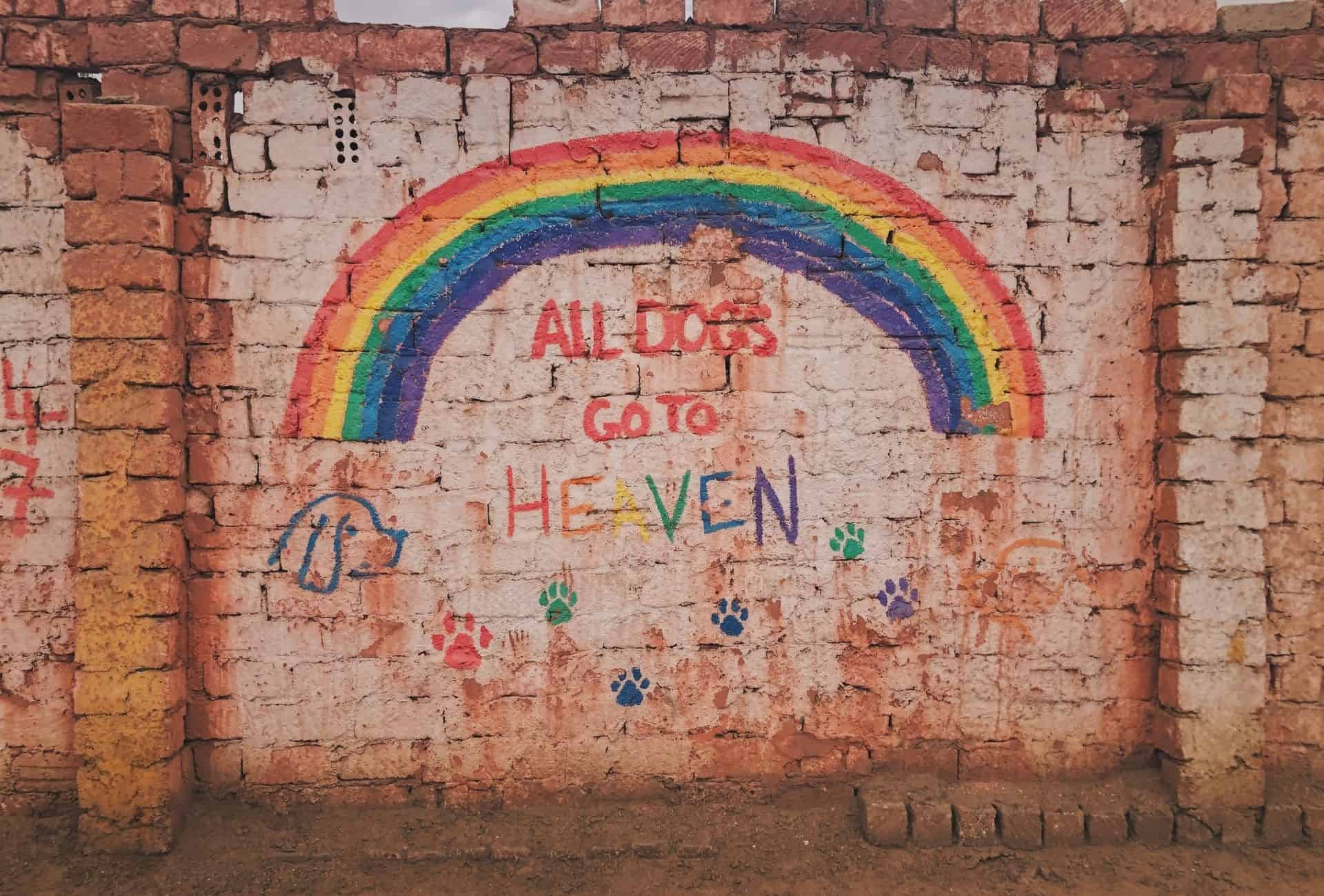 """Colorful graffiti on a brick wall """"all dogs go to heaven""""."""