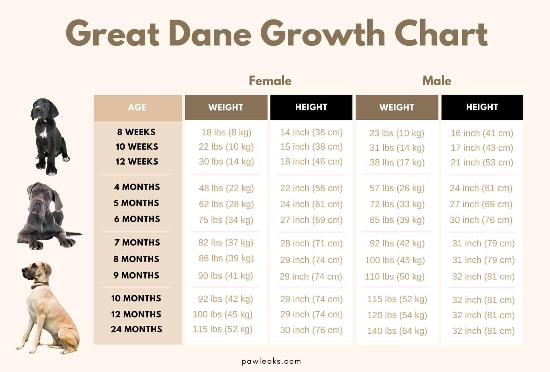 GreatDane growth chart