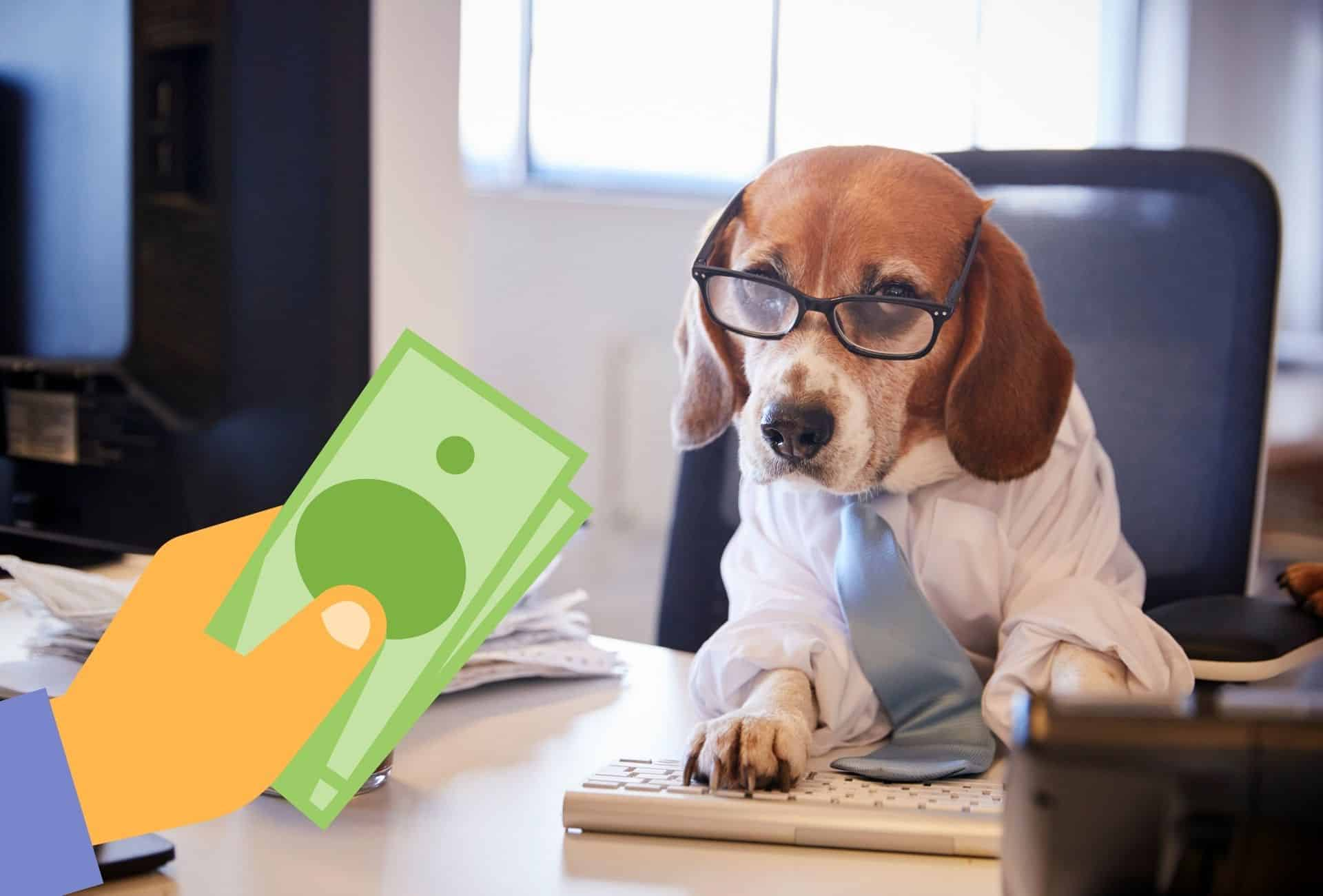 Beagle dressed in business clothing working on a computer receives a couple of dollar bills, showing that adopting a Beagle costs money.